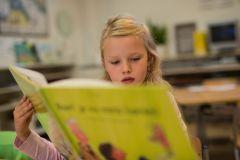 Nieuwe cursus dyslexie bij Driestar Onderwijsadvies : continuüm van zorg remediëren