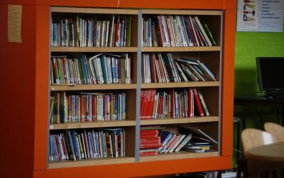 Van analfabeet tot 'leesbeest' : over het resultaat van een dyslexiebehandeling